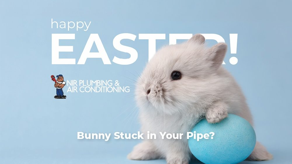 BUNNY IN YOUR PIPE