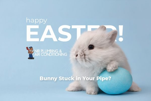 Is There A Bunny In Your Pipe? Weird Things Found In Pipes